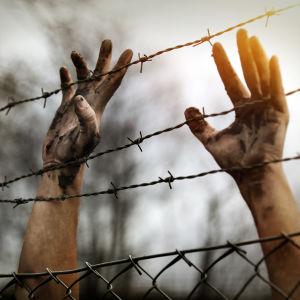 Två smutsiga händer bakom taggtråd.