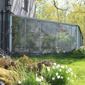 Växthus fast i hus.