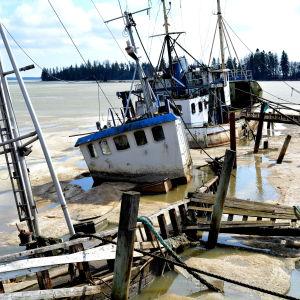 Skrotbåtar i Isnäs hamn.