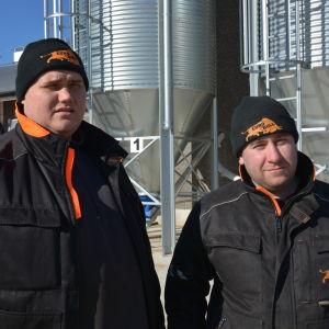 Samuel Ingves och Marcus Teir äger och driver Eurobull i Härkmeri i Kristinestad.