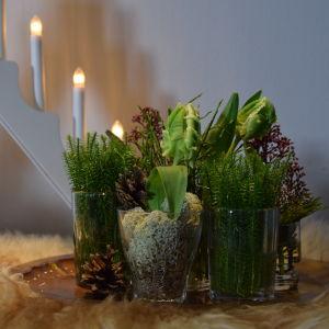 Små arrangemang i glas av mossa, skimmia, tulpan, blåbärsris och andra naturmaterial.