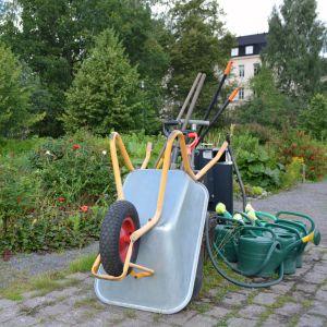kolonilotterna i östanåparken i nickby 14.07.16