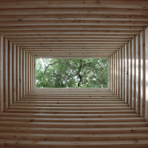 The Finnish section of the Re-Creation installation at the Alvar Aalto Pavilion of Finland, Venice 2014.