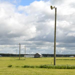 270 högtalarstolpar är utplacerade på Söderfjärden i Vasa inför suviseurats sommarmöte sista helgen i juni.