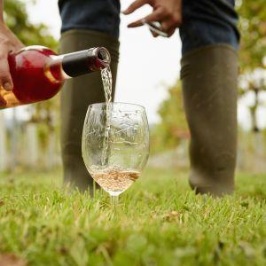 En person som häller vin i ett vinglas. Utomhus på en gräsmatta.