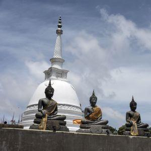 Buddhastatyer i Sri Lankas största stad Colombo.