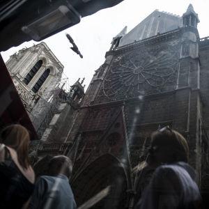 En dramatisk mörk bild på Notre-Dame kyrkan, tagen ur grodperspektiv