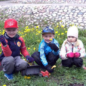 Tre barn i dagisåldern ute bland maskrosor.