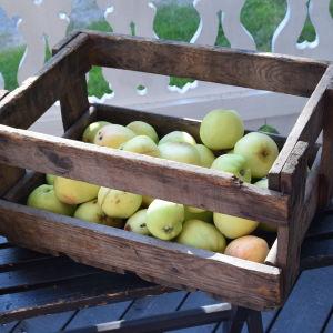 Äppel i en trälåda på en bänk