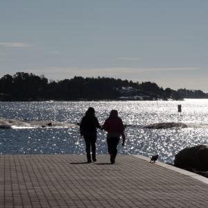 Kaksi henkilöä ulkoiluttaa koiraa meren rannalla.