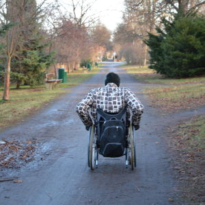 En person i rullstol åker fram på en smal väg eller gångväg i höstlandskap.