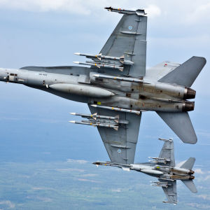 Flygvapnets F-18 Hornet-plan