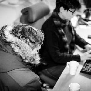 Ung man sitter vid socialarbetarens skrivbord medan hon skriver på en rapport