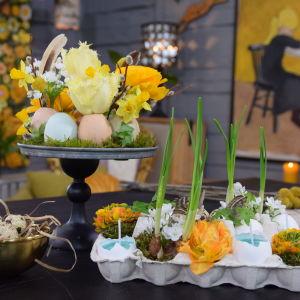 Två arrangemang med äggskal och påskblommor som tulpan, narciss, ranunkel och vide.