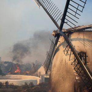 En brand i kapstaden har förstört Sydafrikas äldsta fungerande väderkvarn