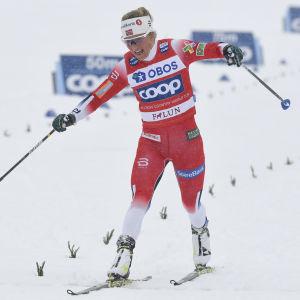 Therese Johaug åker i mål i världscuptävlingen i Falun.