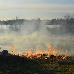 Terräng brinner.