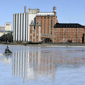 En pilkare sitter på den blanka isen i dagsljus utanför academill och silorna.