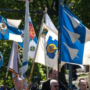 Puolustusvoimain lippujuhlapäivä, sotilaita, lippuja, sotilaat marssivat ja kantavat lippuja