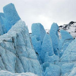Matanuskan jäätikkö Alaskassa