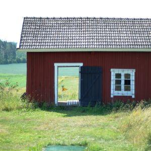 """Bana 3 på Uppgårds fotisgolf går genom en """"rökbastu""""."""