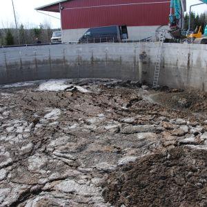 Bassäng med tusentals kubikmeter gödsel från grisproduktion.