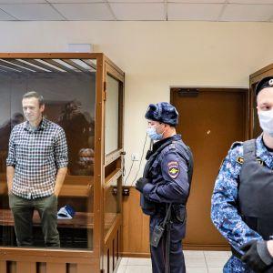 Navalnyi seisoo lasiseinäisessä häkissä oikeussalissa, ruutupaidassa, kädet taskuissa. Häkin ulkopuolella seisoo kaksi univormupukuista miestä vartiossa.