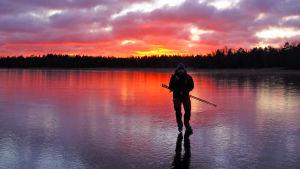 Långfärdsskridskoåkare på isen.