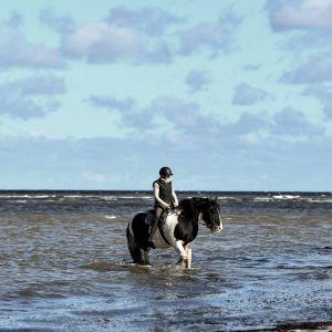 Kvinna på hästryggen i vattenbrynet nära Kiel i Tyskland.