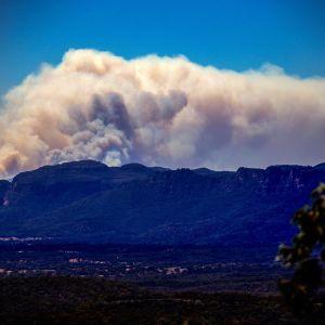 Markbränder härjar i Wollemi National Park.