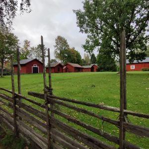 En stor gräsplan med röda stugor och bodar. Framför en gärdsgård, ett staket gjort av höstörar.