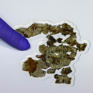 Pergament som hittades i en grotta på Västbanken. 16.3.2021