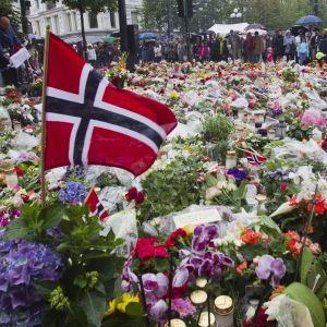 Kuvassa kukkameri Norjassa 2011 Utoyan iskun uhrien muistoksi