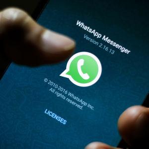 Bild av Whatsapps logotyp på en mobilskärm.