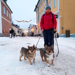 En kvinna och två hundar på Rådhustorget i Borgå.