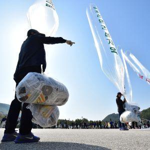 En arkivbild på när sydkoreanska aktivister och nordkoreanska avhoppare förbereder ballonger med flygblad som skickas norrut från en park i Paju, nära gränsen mot Nordkorea.