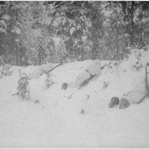18.1.1940 Joutsijärvi. Hiihtopartio.
