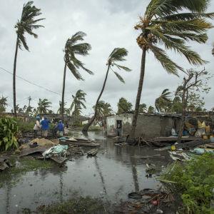 Invånare i Sofalaprovinsen i centrala Moçambique inspekterar skadorna efter stormen Idai den 16 mars 2019.