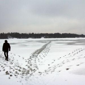 Mikko Mäntyniemi Helsingin edustalla, tumma hahmo