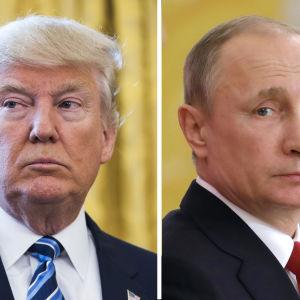 Donald Trump och Vladimir Putin i en kombinationsbild.