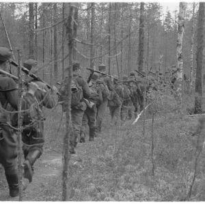 Läpi sankkojen metsien, yli soitten ja rämeitten käy kaukopartion tie Vienan korpisaloilla. Rukajärvi 1942.09.08