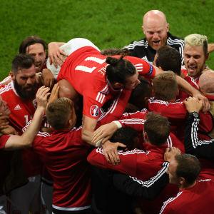 Wales jublar efter lagets 2-1-mål mot Belgien.