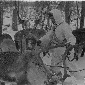 1.2.1940 Poropartio Petsamossa