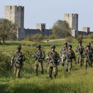 11 militärer går på en äng i full mundering och vapen i hand. I bakgrunden syns Visby ringmur.