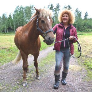Stall Trollhorse Maria Ingström och häst