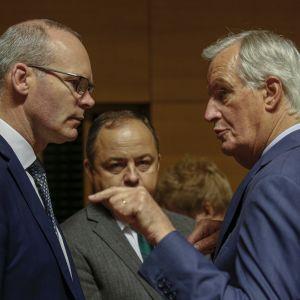 Irländska utrikeshandelsministern Simon Coveney diskuterade med chesförhandlaren Michel Barnier (t.v.) i Luxemburg igår. Brexitförhandlingarna fortsätter i dag.