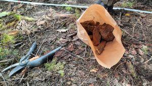 En brun papperspåse med ben i på marken.