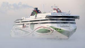 Ett kryssningsfartyg i dimma.