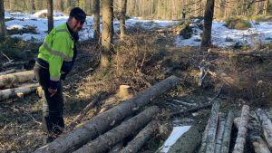 En man med arbetskläder står intill en virkeshög i skogen