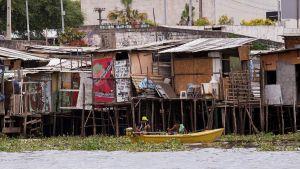 Kåkstad nära Recife i Brasilien där zikaviruset spritt sig snabbt.
